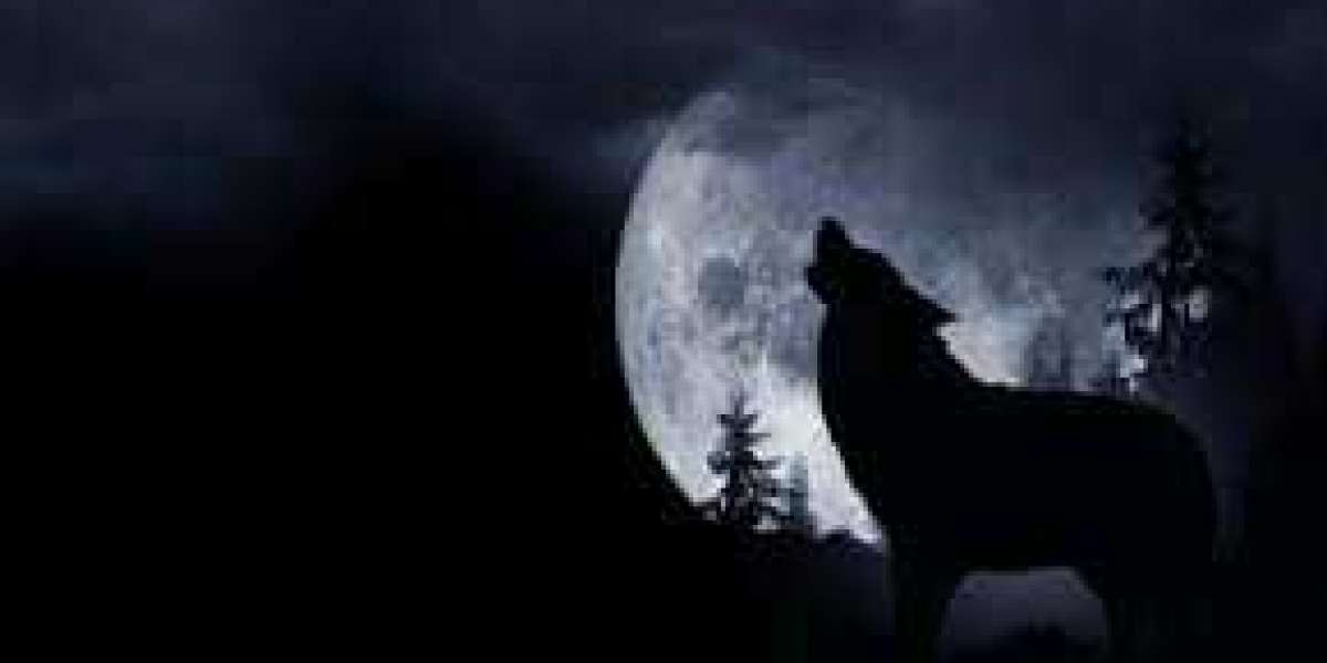 """Will We See """"Wolf Moon"""" This January?"""